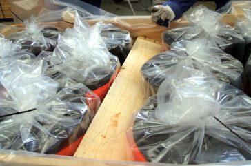 Dic. 2010 - Embalaje y protección especial contra la corrosión